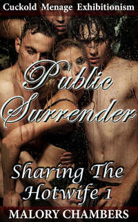 cover design for the book entitled Public Surrender
