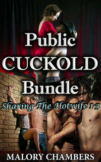 cover design for the book entitled Public Cuckold Bundle