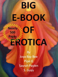 cover design for the book entitled BIG E-BOOK OF EROTICA