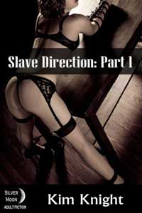 cover design for the book entitled Slave Direction Part 1