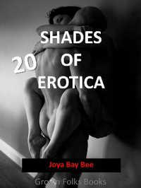 cover design for the book entitled 20 Shades of Erotica