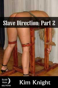 Slave Direction Part 2
