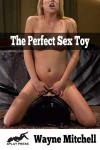The Perfect Sex Toy