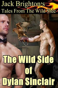 The Wild Side of Dylan Sinclair
